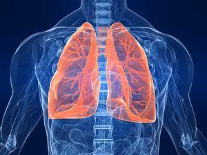 Рак желчного пузыря: первые симптомы и проявления, стадии, прогноз и лечение