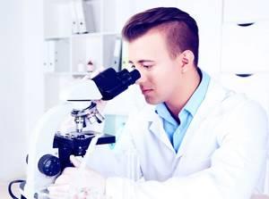 АФП онкомаркер: что показывает, норма, расшифровка