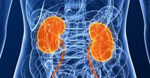 Рак почки 4 стадии: сколько живут с метастазами, лечение и прогноз