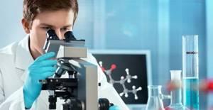 Как быстро поднять тромбоциты в крови после химиотерапии: какие продукты могут повысить тромбоциты