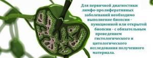 Парааортальные лимфоузлы: норма, причины увеличения размера, где находятся