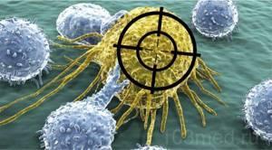 Таргетная терапия: последствия и препараты при лечении онкологии
